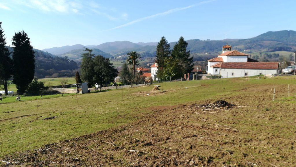 Santa Cruz de Llanera